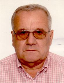 Muhidin Handzic