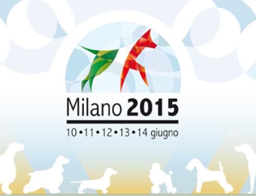 World Dog Show 2015.